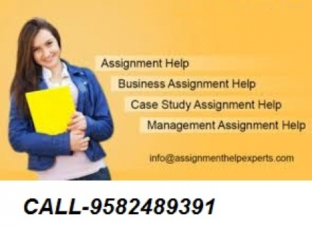 NIOS ASSIGNMENT SOLVED  301 Hindi Papers Class 12