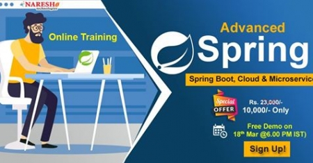 Best Institute for Learning Spring Advanced Online Training course in USA -