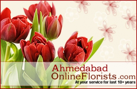 Get Online Same Day Flower Delivery all across Ahmedabad-Free Shipping, Low Cost